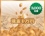 現金賞1万円賞